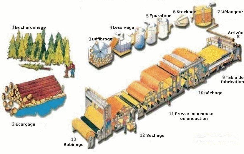 image montrant le processus de fabrication du papier et du carton